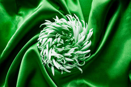 draped: Floral brooch on green draped silk as a background Stock Photo