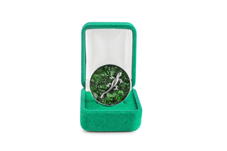 jewel box: Emerald brooch with silver lizard in jewel box on white background Stock Photo