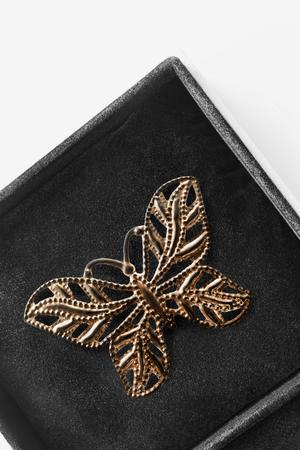Broche papillon d & # 39 ; or dans une boîte noire bijou closeup Banque d'images - 88023300