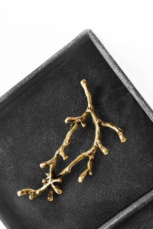 Gold brooch in the shape of a branch in black jewel box closeup Banque d'images - 139015877