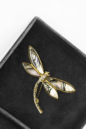 Elegant gold dragonfly shaped brooch with crystals in black jewel box