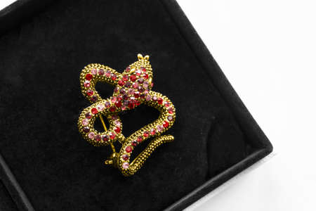 Gold serpent shaped brooch with red gems in black jewel box 免版税图像