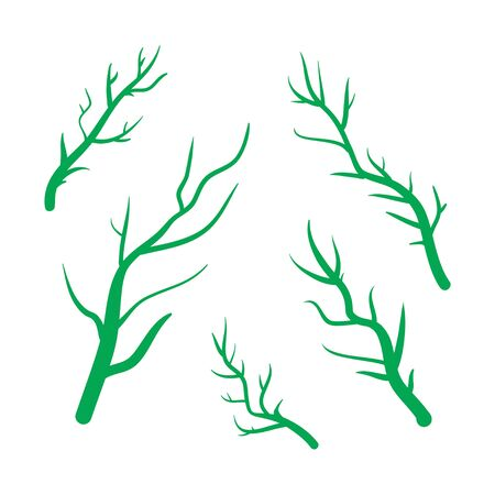 green branches: Green Branches vector hand drawn illustration. Icons on transparent background.