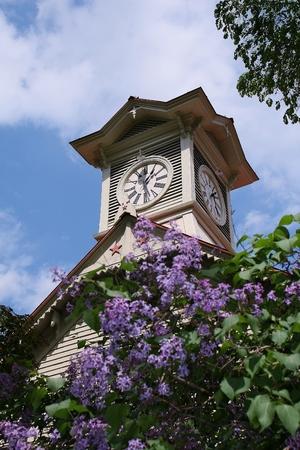 Lilac clock tower Imagens