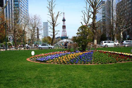 odori: sapporo odori park and tv tower