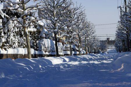 大雪が降った札幌市