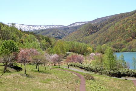 Asari dam and the lake Otarunai of fresh green hokkaido Stock Photo - 78416871