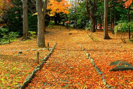In the autumn landscape of Hokkaido, Sapporo, Nakajima Park Stock Photo