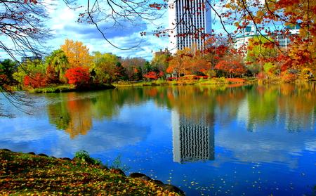 Sapporo, autumn landscape of Nakajima Park, Standard-Bild - 112160312