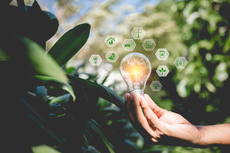 Business hand holding light bulb,with brain icon,creativity and innovative are keys to success,new ideas and innovation concept.