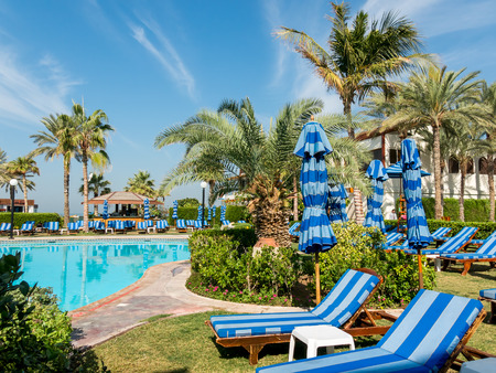 sunbeds: DUBAI, UNITED ARAB EMIRATES UAE - JAN 28, 2014: Sunbeds, palm trees and pool in tropical garden of luxury hotel beach resort