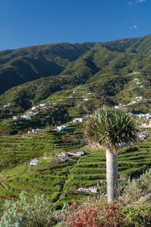 bartolome: View towards Cumbre Mountain Ridge from Mirador de San Bartolom alongside the east coast north of Santa Cruz on the island La Palma, Canary Islands, Spain