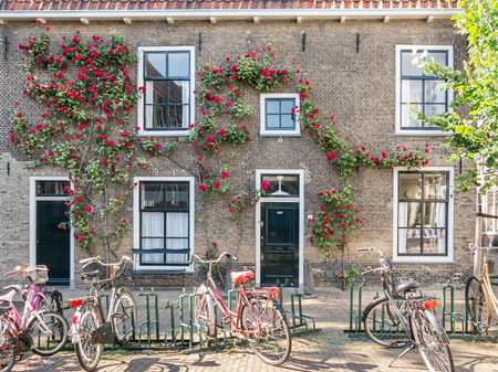 front doors: GOUDA, NETHERLANDS - JUNE 10, 2015: House wall with front doors, windows and climbing rose, parked bicycles, in the old center