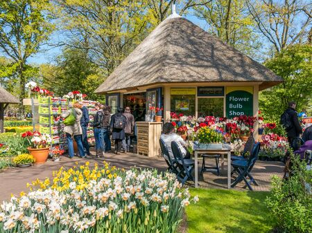 flower bulb: Tourists buying gifts at flower bulb gift shop in spring in Keukenhof Gardens in Lisse, Holland, Netherlands Editorial