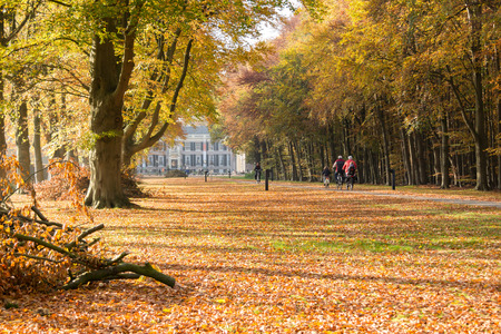 bicycling: Bicycling people on path towards Groeneveld Castle in Baarn in autumn, Netherlands Stock Photo
