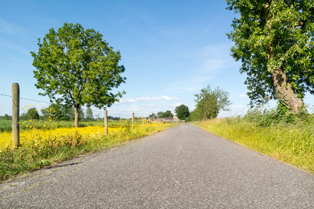 polder: Road in polder landscape in the countryside near Amersfoort, Netherlands Stock Photo