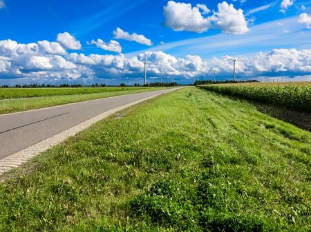 polder: Country road, farmland and wind turbines in Flevoland polder, the Netherlands