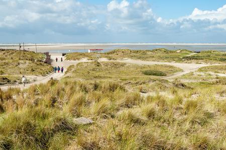 desert ecosystem: Dunes and footpath to North Beach on the island Borkum, Lower Saxony, Germany