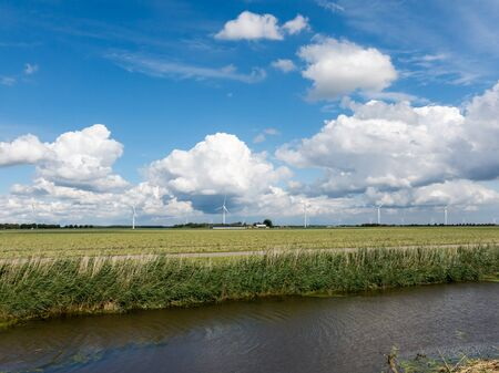 polder: Rural polder landscape with ditch, farmland and wind turbines in the province of Flevoland, Netherlands
