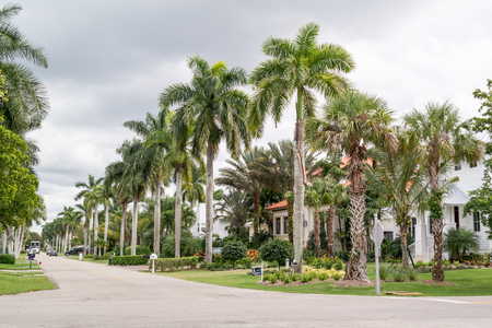 streetscene: NAPLES, USA - DEC 10, 2015: Streetscene with houses and palm trees of 13th Avenue South in the city of Naples, Collier county, Florida, USA