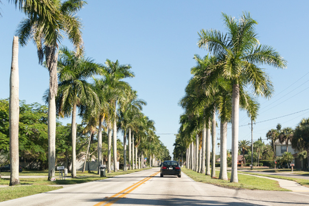 myers: FORT MYERS, USA - DEC 11, 2015: Traffic and palm trees on McGregor Boulevard in Fort Myers, Florida, USA Editorial