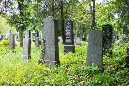 graves: Graves on Jewish section of Central Cemetery in Vienna, Austria Editorial
