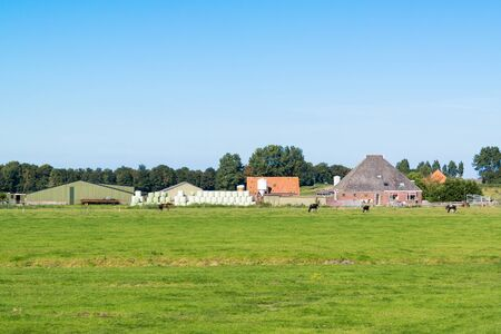 north holland: Farmhouse and meadows in polder near Spijkerboor in North Holland, Netherlands