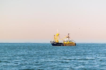 WADDENSEA, NETHERLANDS - SEP 8, 2016: Commercial shrimp trawler shrimp fishing on Waddensea, Netherlands