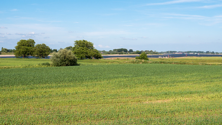 flood area: Panorama of flood plains of river Waal from dike near Brakel, Bommelerwaard, Gelderland, Netherlands