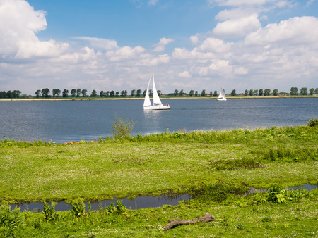 swampland: Sailboats sailing on Haringvliet estuary and wetland of Tiengemeten island in foreground, South Holland, Netherlands Stock Photo