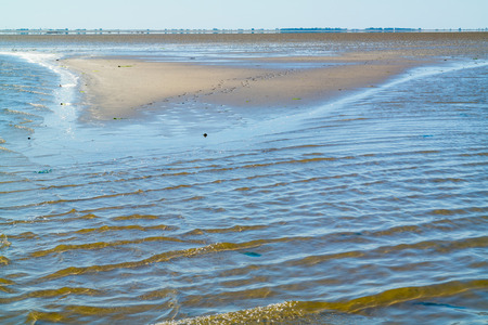 Panorama of mud and sand flats, mirage and rippling shallow water at low tide on Waddensea, Netherlands