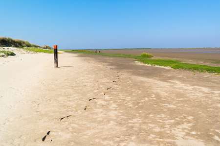 Panorama of dunes, sand flat and beach with wooden beach pole with red top and footprints in sand, North Sea coast of Kwade Hoek on Goeree near Rotterdam, South Holland, Netherlands