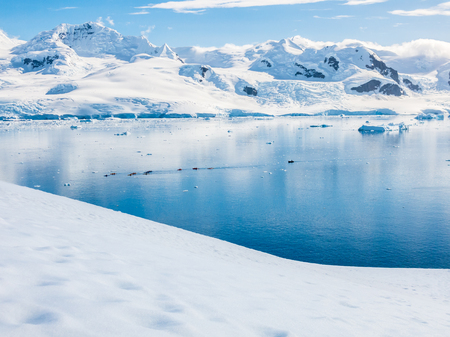 View from Neko Harbour down to Andvord Bay with people kayaking, Arctowski Peninsula, mainland Antarctica