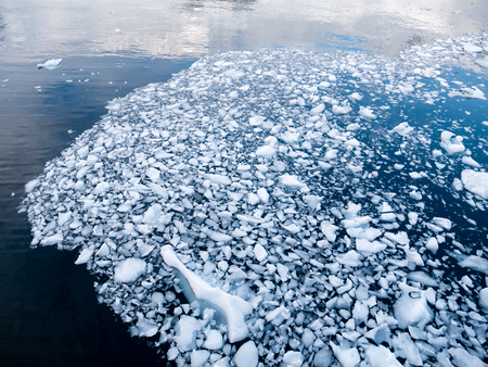 Brash ice, chunks of ice melting and floating in water of Andvord Bay, Antarctica Stock Photo