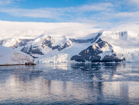 Floating brash ice and glaciers of Lester Cove and Neko Harbour, Andvord Bay, Arctowski Peninsula, mainland of Antarctica Stock Photo