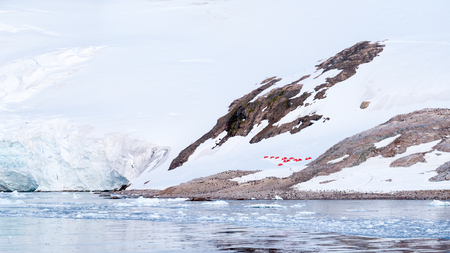 Red tents of camp site and gentoo penguins, Neko Harbour, Arctowski Peninsula, Antarctica 版權商用圖片