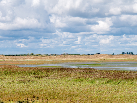 Panorama of salt marshes of Mokbaai, inlet of Wadden Sea on West Frisian island Texel, Netherlands 免版税图像