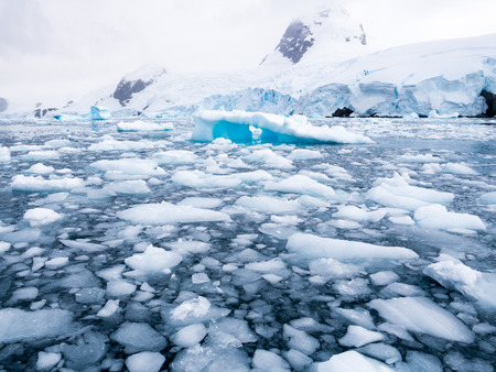 Floating ice floes, drift ice in Cierva Cove in Hughes Bay, Graham Land, Antarctic Peninsula, Antarctica