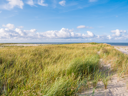 Dunes and beach of Boschplaat on Terschelling island, tidal outlet Borndiep and Ameland island with lighthouse, Wadden Sea, Netherlands Stok Fotoğraf