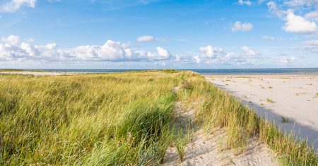 View to North Sea from dunes with marram grass and beach of nature reserve Boschplaat on Frisian island Terschelling, Netherlands