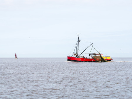 Shrimp trawler fishing on  Wadden Sea, Netherlands