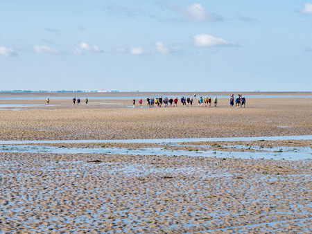 Group of people mud flat hiking on Wadden Sea at low tide from Friesland to West Frisian island Ameland, Netherlands Editorial