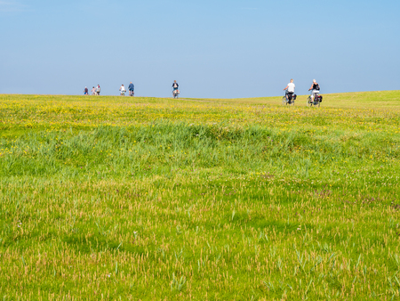Group of bicyclists riding bikes on dike with grass field on a sunny day with blue sky, Schiermonnikoog, Netherlands