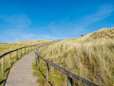 Footpath between wooden fences leading up to viewpoint dune with people in nature reserve Het Oerd on West Frisian island Ameland, Friesland, Netherlands