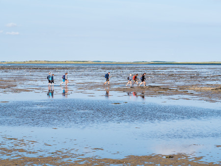 Group of people mud flat hiking on Wadden Sea at low tide from Friesland to West Frisian island Ameland, Netherlands Redactioneel