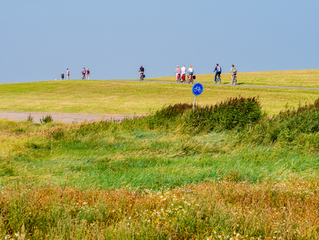 SCHIERMONNIKOOG, NETHERLANDS - AUG 29, 2017: People riding bicycles on dike with salt marshes in foreground on West Frisian island Schiermonnikoog, Netherlands