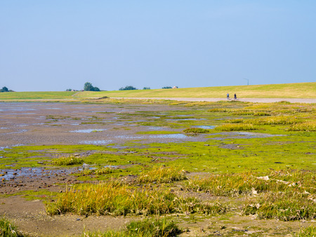 Tidal flats at low tide and people riding bicycles on dike of West Frisian island Schiermonnikoog, Netherlands Stok Fotoğraf