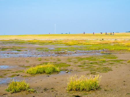 Mud flats at low tide and people riding bicycles on dike on West Frisian island Schiermonnikoog, Netherlands
