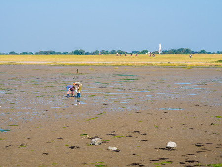 Children playing with mud on tidal flat at low tide and bicyclists on dike of West Frisian island Schiermonnikoog, Netherlands