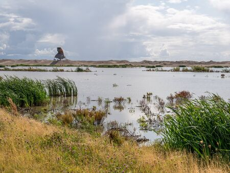 Watchtower and marshland on manmade artificial island Marker Wadden, Markermeer, Netherlands Stock fotó